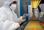 Foto de farmacêutico produzindo medicamento em Farmanguinhos