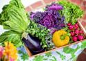 Verduras e legumes em uma cesta