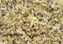Foto em macro de grãos de areia