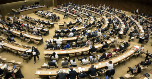 Deputies in the 70th World Health Assembly (Picture: WHO/L. Cipriani)