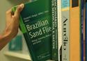 Brazilian Sand Flies