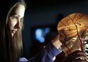 Menina olhando um crânio iluminado feito de plástico
