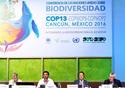 Mesa da 13ª Conferência das Partes da Convenção da Diversidade Biológica (COP-13/CDB)