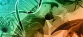 patrimonio genético y al conocimiento tradicional asociado