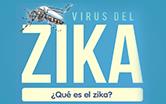 Arte da Opas/OMS, escrito 'Zika, o que é'