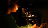 Pesquisador usando microscópio