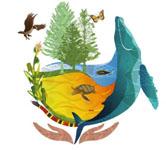 Ilustrações de animais para compor uma imagem sobre biodiversidade