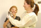 Veterinária cuida de gato