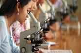 Foto: ONU Mulheres Vietnã