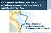 Microcefalia: diretrizes