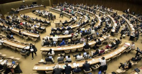 Delegados na 70a Assembleia Mundial da Saúde (Foto: WHO/L. Cipriani)