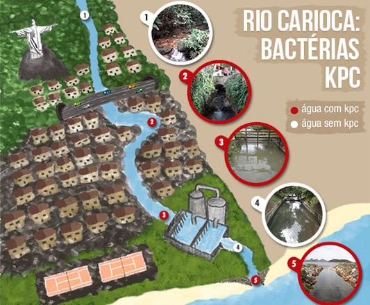 Infográfico mostrando ondese encontram as superbactérias