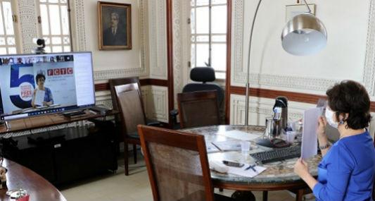 Nísia durante o encontro virtual com a OMS