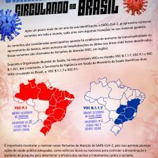 Variantes em circulação no Brasil