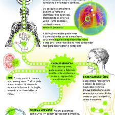 Infográfico sobre o impacto do coronavírus no corpo humano