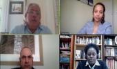 Participantes da webconferência